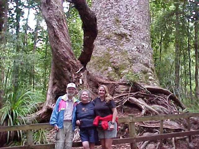 (New Zealand, The Travel Addicts)