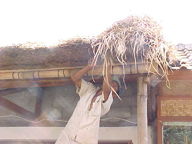 fixing a thatched roof in Ubud
