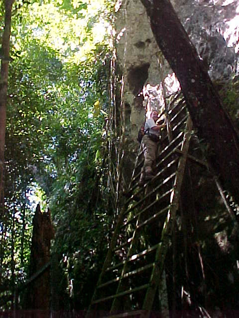 SGK climbs to view the bones (Malaysia, The Travel Addicts)