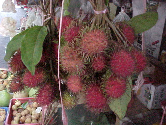 Rambutans (Malaysia, The Travel Addicts)