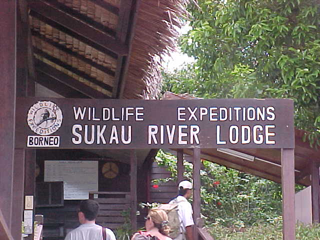 Wildlife Expiditions' Sukau River Lodge : This is where we stayed (Malaysia, The Travel Addicts)