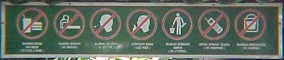 MVC-861c-Things not to do in front of orangutans. Sepilok Orangutan Rehabilitation Centre, Sabah, Malaysia