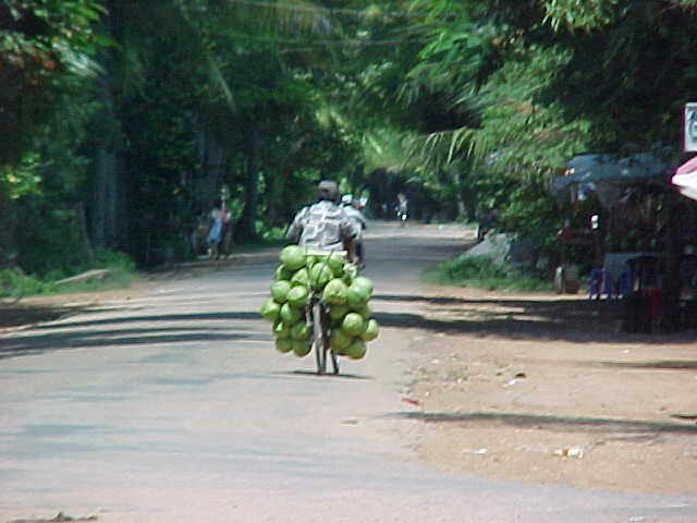 Selling mellons (Cambodia, The Travel Addicts)