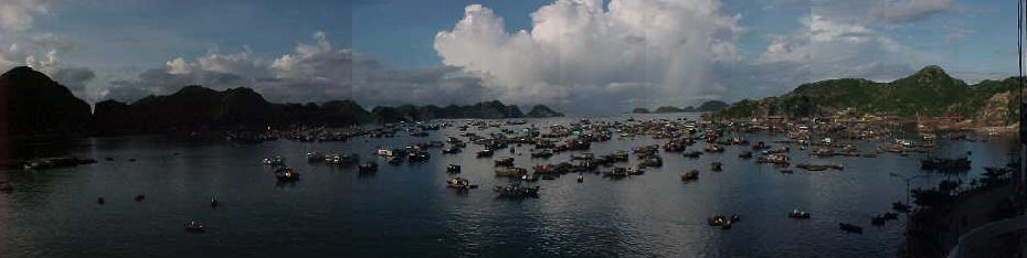 56970-Panorama of Cat Ba harbour :  (The Travel Addicts, Vietnam)