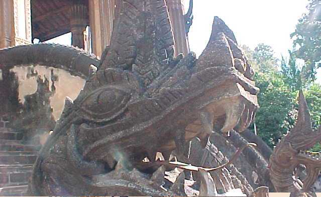 Bronze tounged dragon