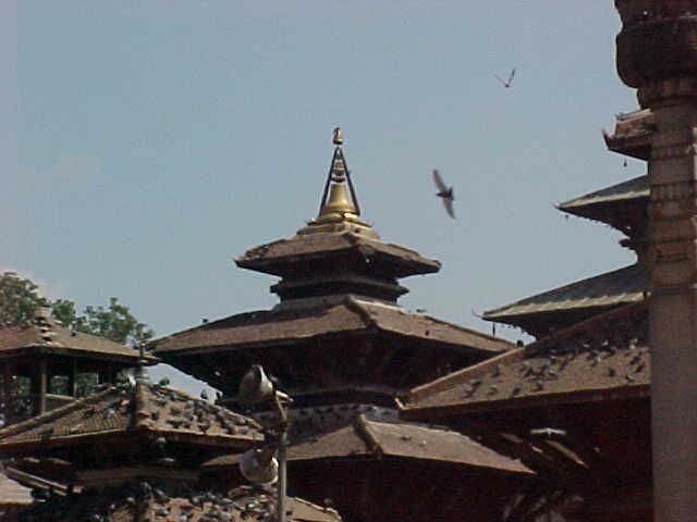 Palace rooftop (Nepal, The Travel Addicts)