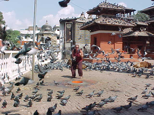 SGK scares the birds (Nepal, The Travel Addicts)