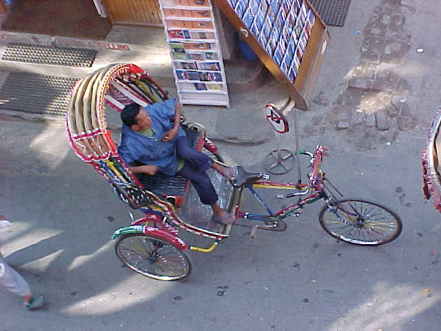 Bicycle rickshaw (Nepal, The Travel Addicts)