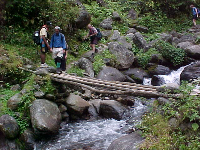 Primitive bridge (Nepal, The Travel Addicts)
