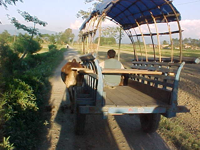 The ox cart that we rode to the village in (Nepal, The Travel Addicts)