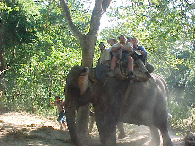 -In the howdah atop our mighty hathi! (Nepal, The Travel Addicts)
