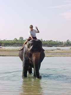 SGK and the elephant's bath!