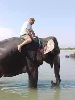 My turn to give the elephant a bath