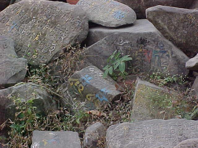 Tibetan inscriptions on stones (Nepal, The Travel Addicts)