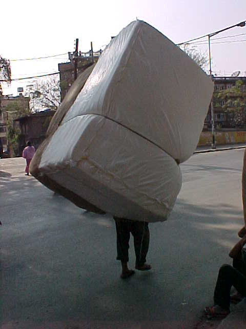 Heavy load (Nepal, The Travel Addicts)