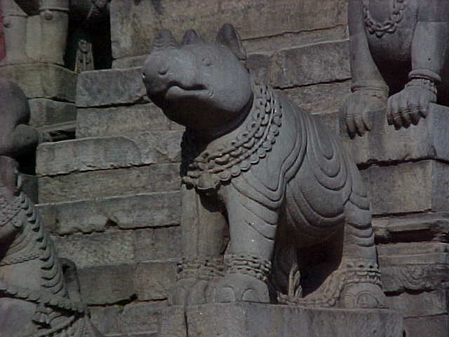 Rhino in Durbar Square (Nepal, The Travel Addicts)