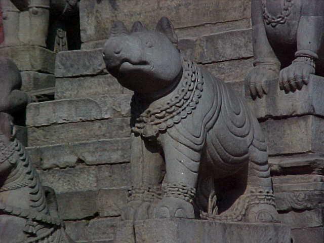 Rhino in Durbar Square (Nepal, The Travel Addicts)